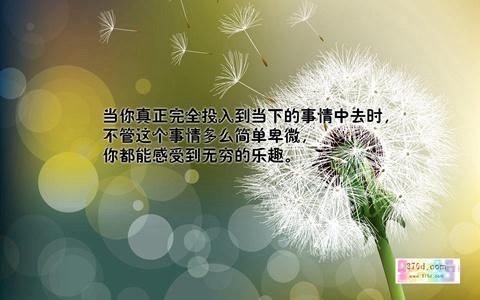18534264_19.jpg